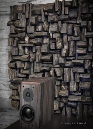 acoustic panels, acoustic treatment, hi end audio, listening room acoustic, music room acoustic, home theatre acoustic, art acoustic panels, wood sound diffusers, recording studio acoustic treatment, interior design ideas, TAVES, AXPONA,음향 처리,音響治療,木製サウンドディフューザー,목재 사운드 디퓨저